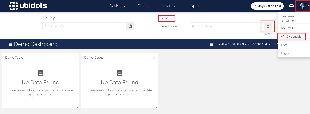 Figure 5 | Ubidots API Credentials - Token