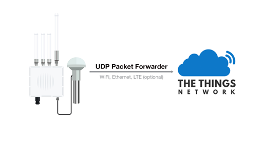 Figure 1: Packet Forwarder